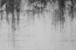 Close-up,Of,White,Cement,Crack,Wall,And,Peeled,Paint,Caused